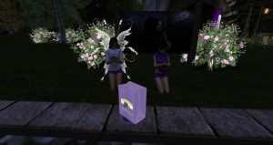 Relay for Life in Second Life 2014